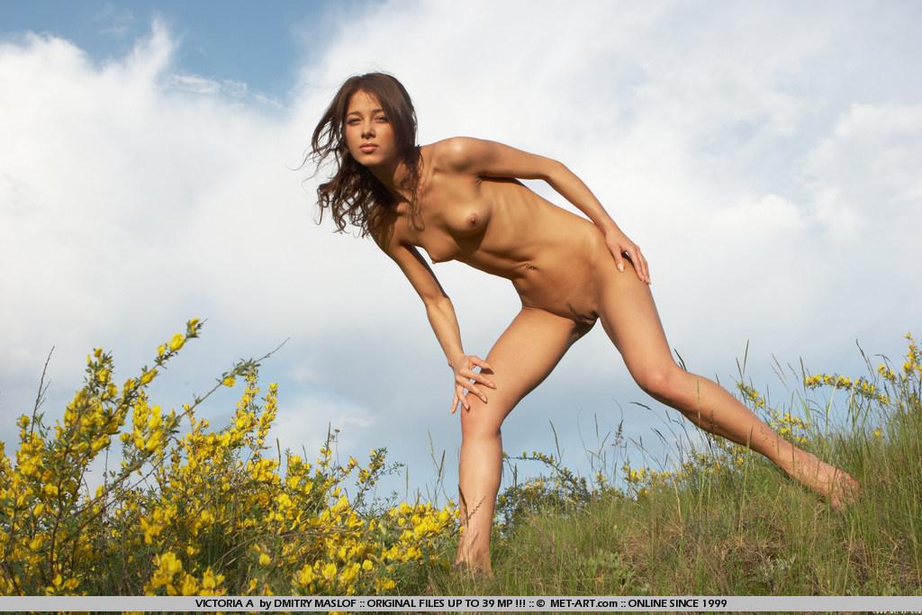 Красотка Victoria A пощипывает сосочки и демонстрирует пилотку на лугу